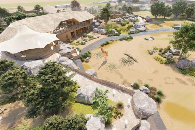 An artist's impression of the new development at Chester Zoo