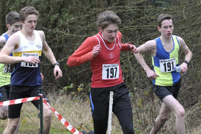 Cheshire Cross Country Championships at Birchwood Forest Park in Warrington on January 4, 2014. Picture: Ian Park