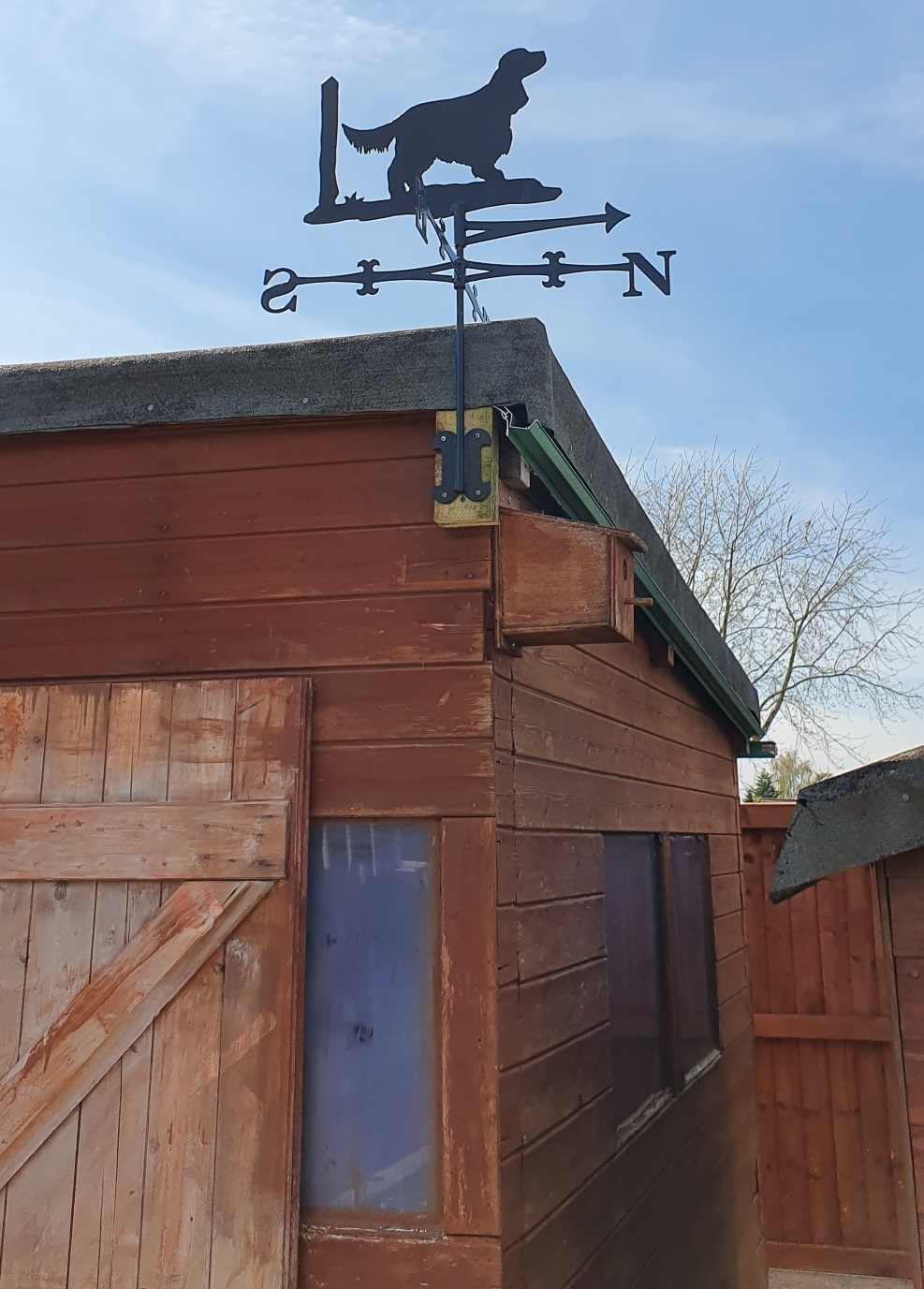 Staff gave Ian a weather vane featuring his beloved cocker spaniel Penny - now taking pride of place on top of his garden shed