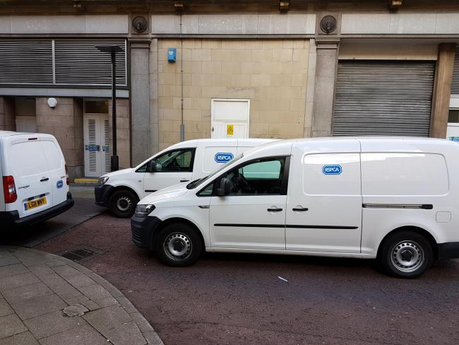 RSPCA: Vans were spotted at the back of the premises a few days later