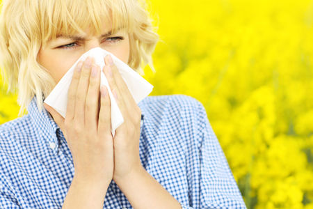 Red pollen warning issued by Met Office - how to lessen the effects of hayfever and asthma