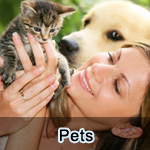 Pet supplements and features